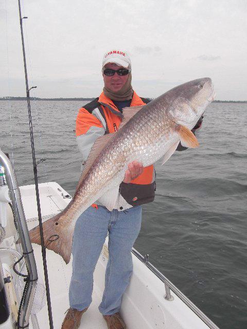 big fish in navarre
